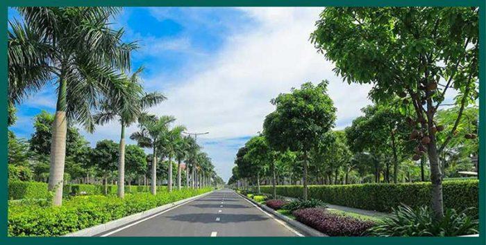 Đường xá hoàn thiện vỉa hè và cây xanh
