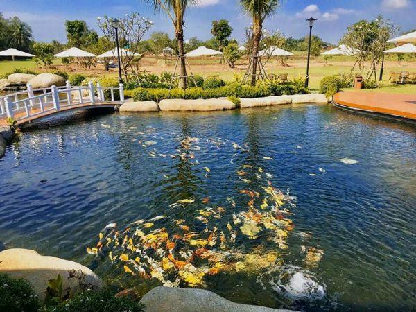 Du-an-Saigon-Garden-Riverside-Quan-9-9